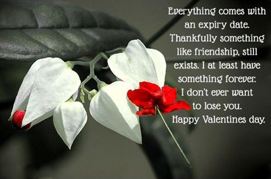 45+ BEST Valentines Day Quotes for Friends & Family 2020