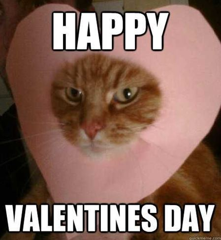 30 Best Funny Valentines Day Memes For Single Friends